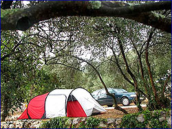 Peljesac Camp/Brijesta Camp /Dubrovnik Camp /Orebic Camp /Camp Zakono in Brijesta